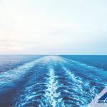 LCL vs FCL: ¿Cuál debe elegir para su despacho marítimo?